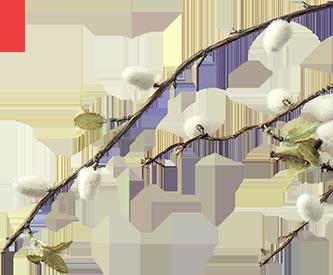 봄 이벤트 tree